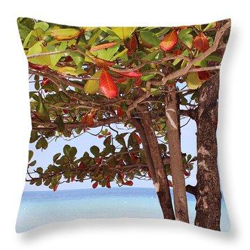 Jamaican Day Throw Pillow