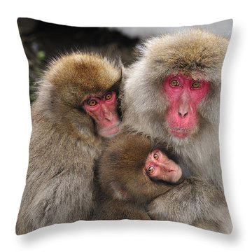 Japanese Macaque Mother With Young Throw Pillow