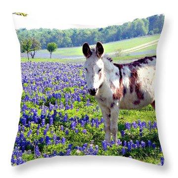 Jesus Donkey In Bluebonnets Throw Pillow