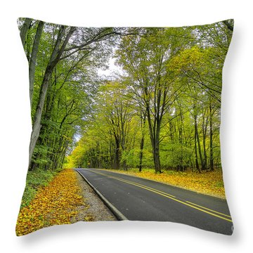 Backroad Throw Pillows
