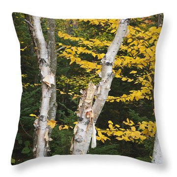 Kancamagus Highway - White Mountains New Hampshire Throw Pillow
