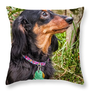 Throw Pillow featuring the photograph Katie by Jim Thompson