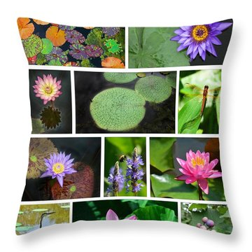 Kenilworth Aquatic Gardens Throw Pillow