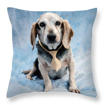 Kippy Beagle Senior And Best Dog Ever Throw Pillow by Iris Richardson