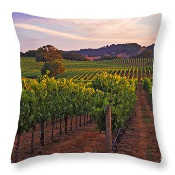 Knight's Valley Summer Solstice Throw Pillow