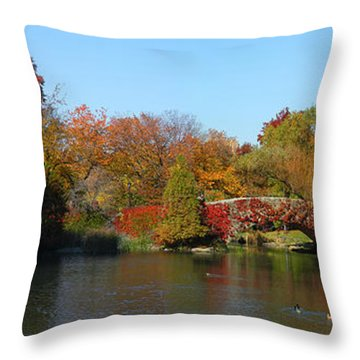 Throw Pillow featuring the photograph Lake In Central Park by Yue Wang