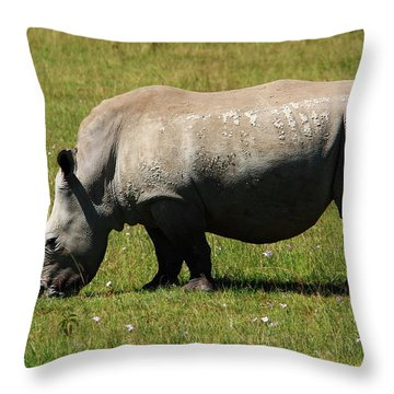 Lake Nakuru White Rhinoceros Throw Pillow by Aidan Moran