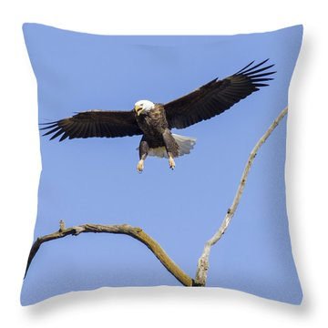 Landing Approach 1 Throw Pillow by David Lester