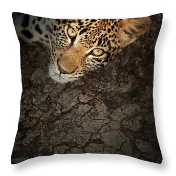 Leopard Portrait Throw Pillow