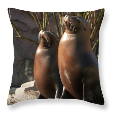 Let's Sing Throw Pillow