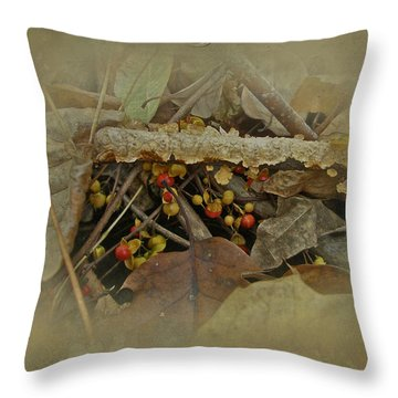 Life Is Bittersweet Throw Pillow by Mother Nature
