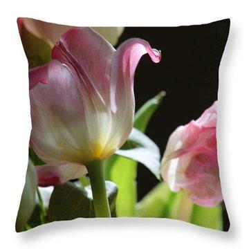Light And Life Throw Pillow