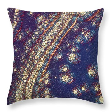 Liquid Crystals Throw Pillow