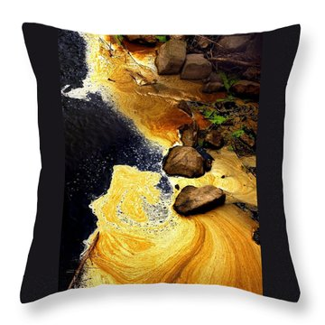 Liquid Gold Throw Pillow by Marcia L Jones