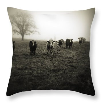 Farm Land Home Decor