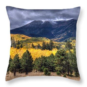 Lockett Meadow Throw Pillow