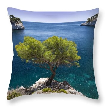 Throw Pillow featuring the photograph Lone Pine Tree by Brian Jannsen