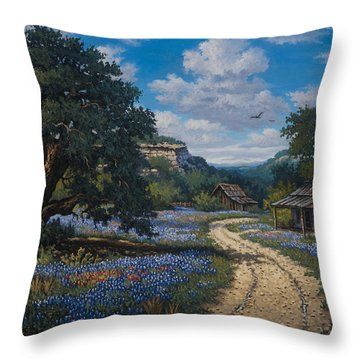 Throw Pillow featuring the painting Lone Star Vision by Kyle Wood