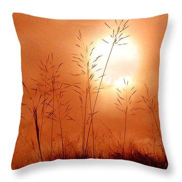 Lonely Planet Throw Pillow by Nirdesha Munasinghe