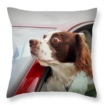 Look... Throw Pillow by Katy Mei