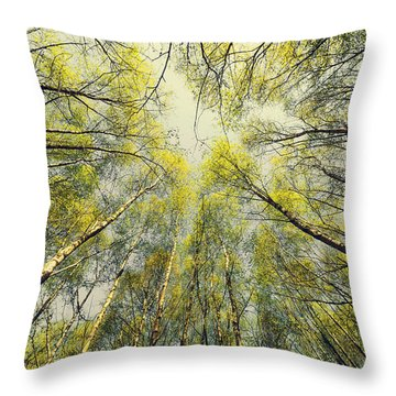Looking Up Throw Pillow by Svetlana Sewell
