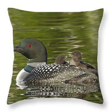 Loon Parent With Two Chicks Throw Pillow