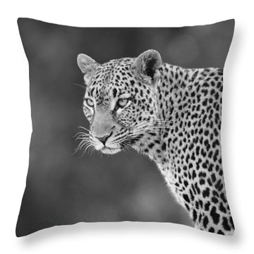 Lovely Leopard Throw Pillow by Michele Burgess