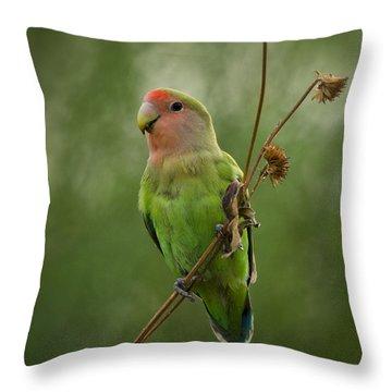 Lovely Little Lovebird  Throw Pillow by Saija  Lehtonen