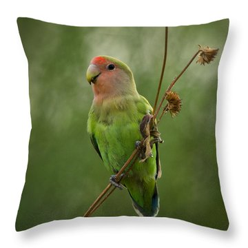 Lovely Little Lovebird  Throw Pillow