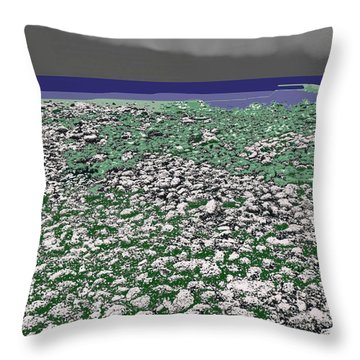 Throw Pillow featuring the digital art Low Tide Color 3  by Lyle Crump