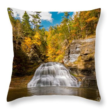 Lower Treman Falls Throw Pillow