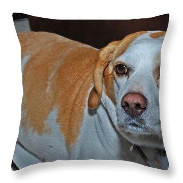 Lunita Throw Pillow