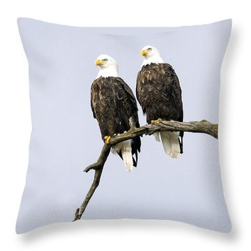 Majestic Beauty 2 Throw Pillow by David Lester