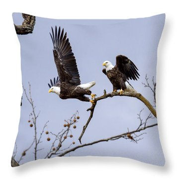 Majestic Beauty  Throw Pillow by David Lester