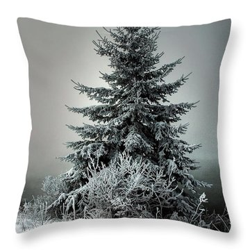 Majestic Winter Throw Pillow by Heather  Rivet