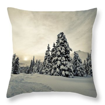 Make Tracks Throw Pillow by Ted Raynor