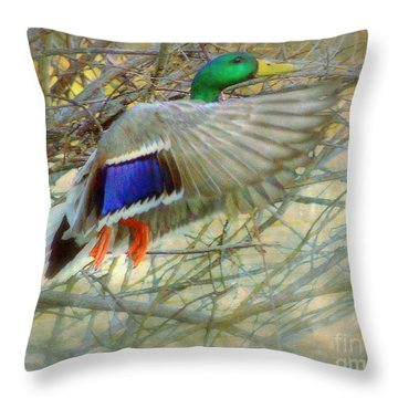Throw Pillow featuring the photograph Mallard by Irina Hays