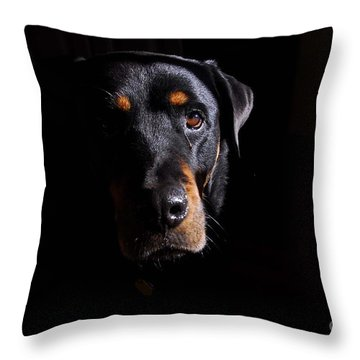 Mandy Throw Pillow by Cindy Manero