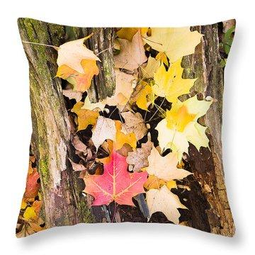 Maple Leaves Throw Pillow by Steven Ralser