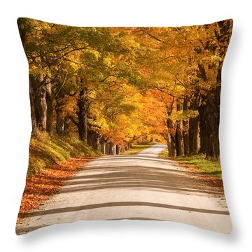 Maple Tree Canopy Throw Pillow