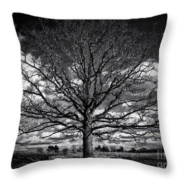 Marion Oaks Throw Pillow