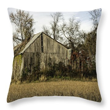Maryland Barns Throw Pillow