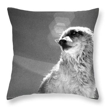 Medicine Wolf Throw Pillow by Deborah Moen