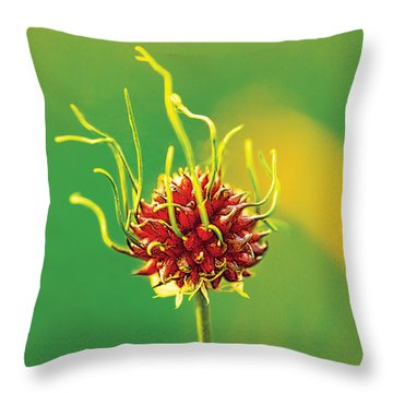 Medusapod Throw Pillow