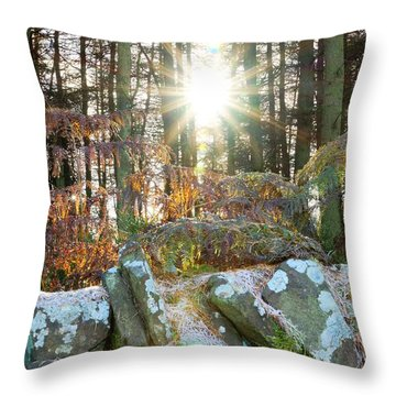 Melting The Mist Throw Pillow by David Birchall