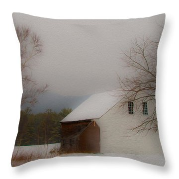 Melvin Village Barn Throw Pillow