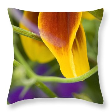 Mexican Hat Up Close Throw Pillow
