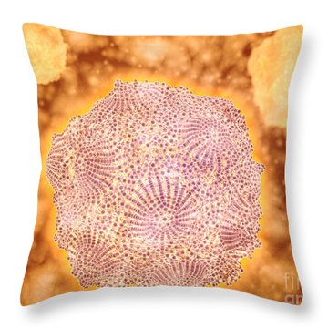Microscopic View Of Canine Parvovirus Throw Pillow