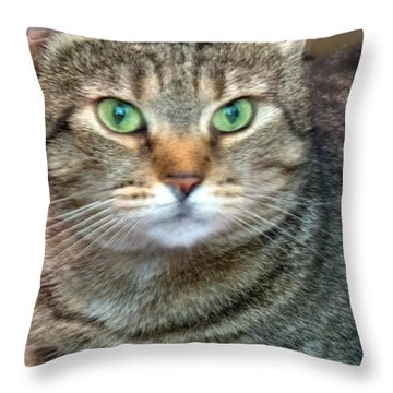 Missy 4  Throw Pillow