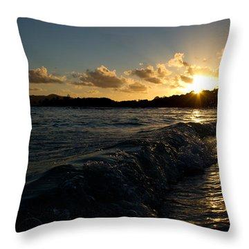 Morning Dip 2 Throw Pillow
